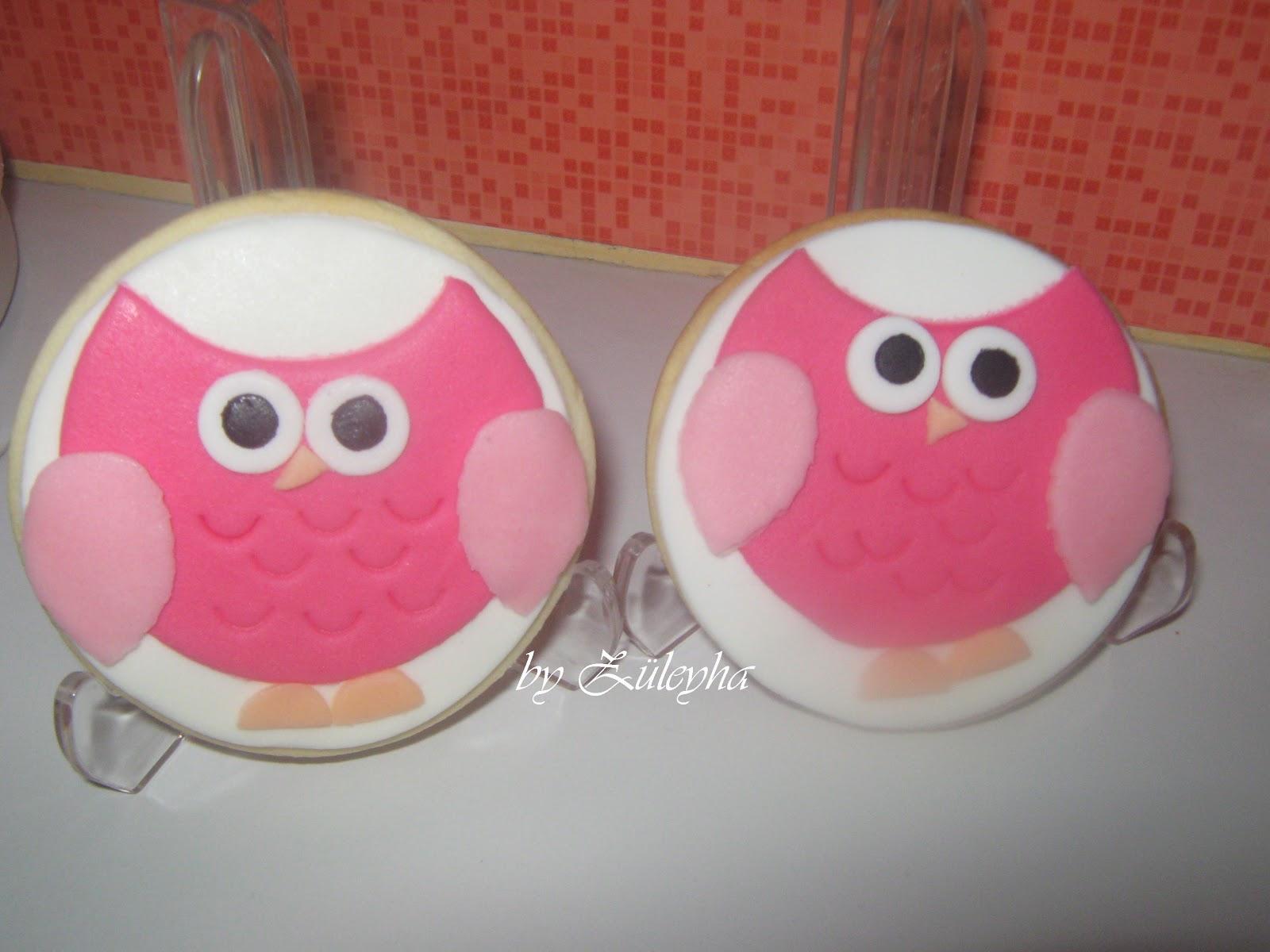 baykuş kurabiye,kuş kurabiye,butik kurabiye,şeker hamurlu kurabiye