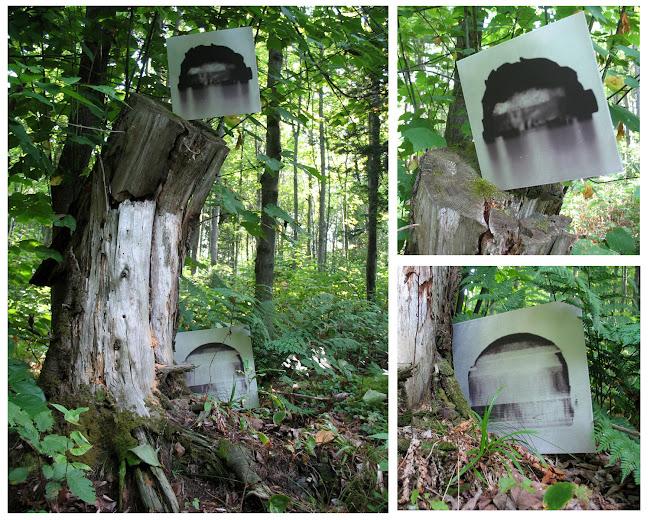Série des portraits robots, impressions sur aluminium, 2012