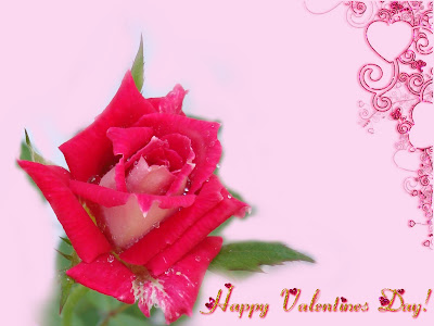 valentines day roses by cool wallpapers at cool wallpapers and wallpaper