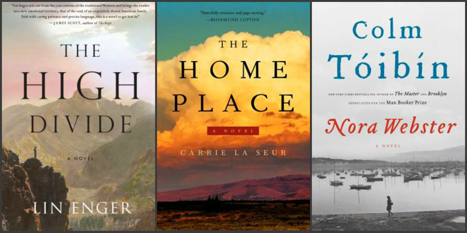 High Divide by Lin Enger, Home Place by Carrie La Seur, Nora Webster by Colm Toibin