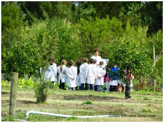 Clase en la huerta - Chacra Educativa Santa Lucía