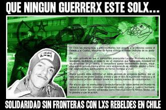 Solidaridad con el Compañero Luciano (Tortuga)