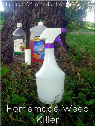 Best Weed Spray For Flower Beds
