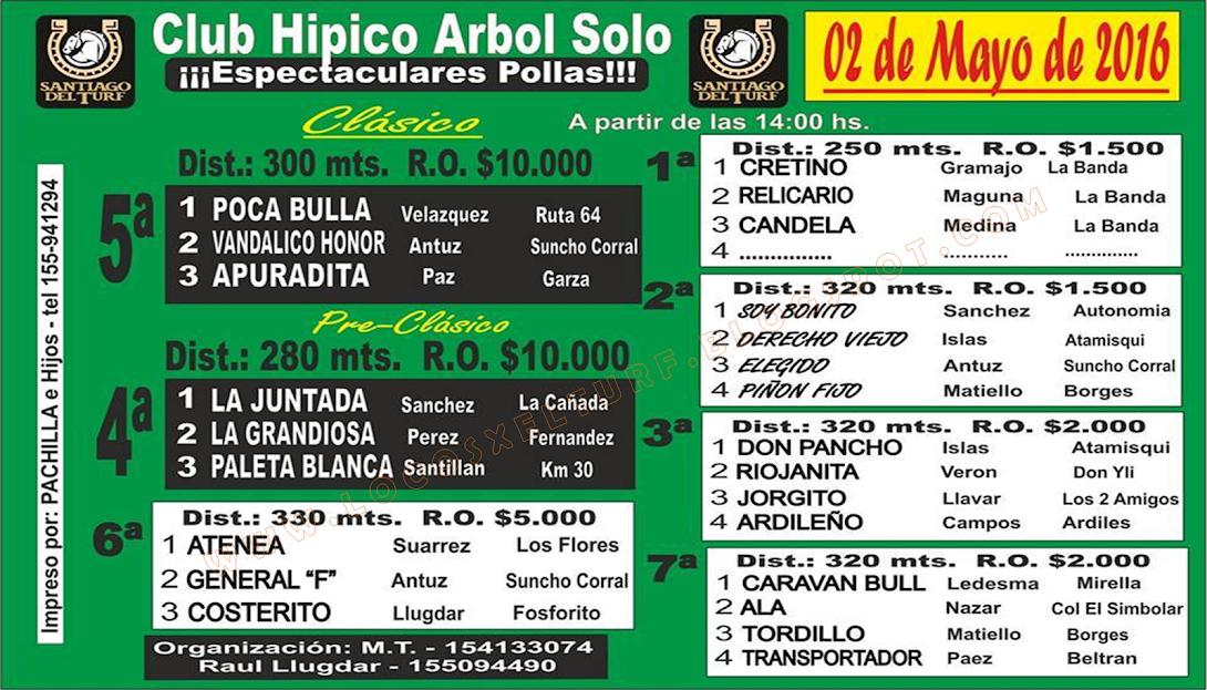 02-05-16-HIP. ARBOL SOLO-PROG.