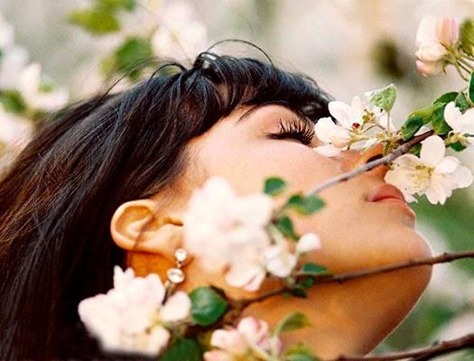 цветочный аромат сна