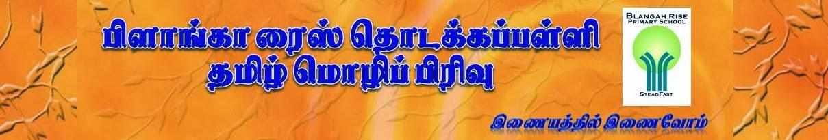 பிளாங்கா ரைஸ் தொடக்கப்பள்ளி