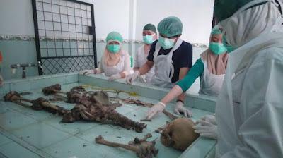 Tulang Belulang Manusia Ditemukan di Areal Kebun Sawit di OKI