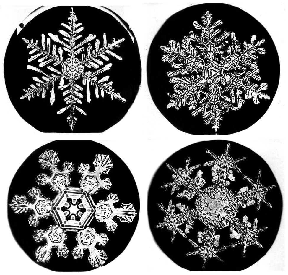 Snowflake Bentley & Winter Craft