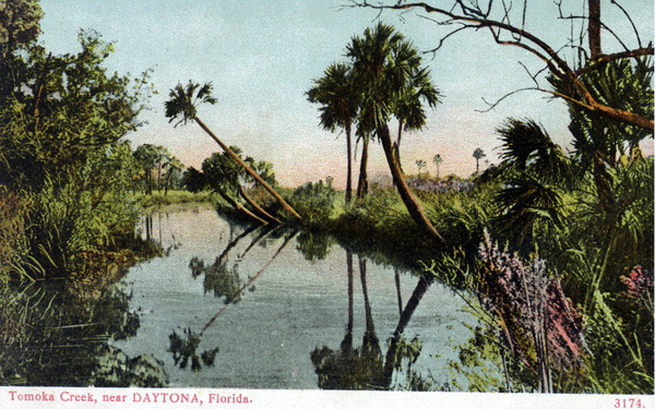 Tomoka Basin Post Card image- vintage
