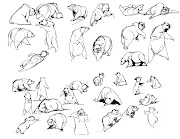 Now here are some bear drawings without any reference
