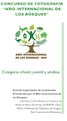 """Bases concurso de fotografía """"Año internacional de los bosques"""""""