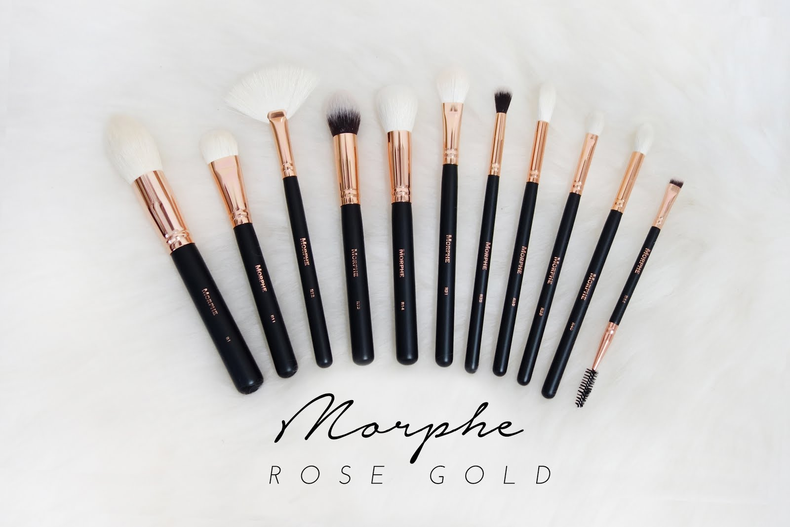 best eyeshadow brushes morphe. morphe brushes | rose gold collection review best eyeshadow