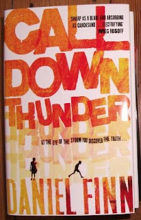 Cover for Call Down Thunder by Daniel Finn