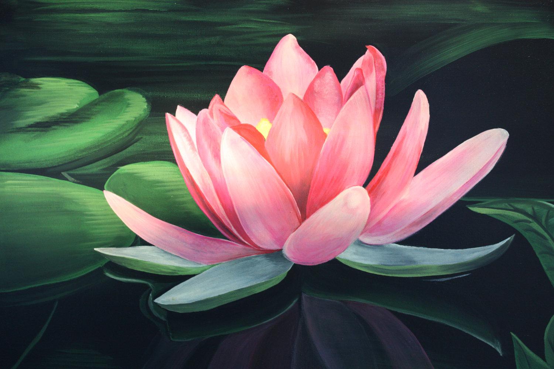 Lotus Loving A Prophet