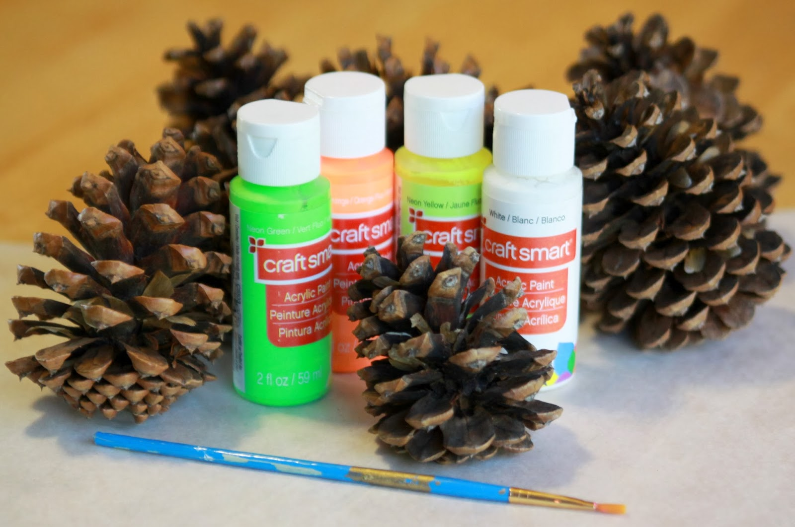 Little gray fox day 5 painted pine cones for How to paint pine cones for christmas