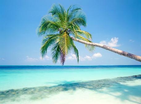 latest us beach vacation spots