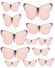 Pink Butterflyes