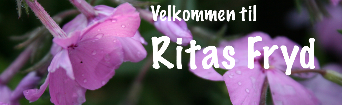 Ritas Fryd