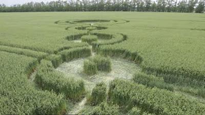 Pola Lingkaran Crop Circle Muncul Lagi di Rusia