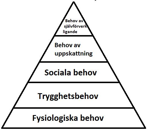 Bildresultat för behovspyramiden maslow