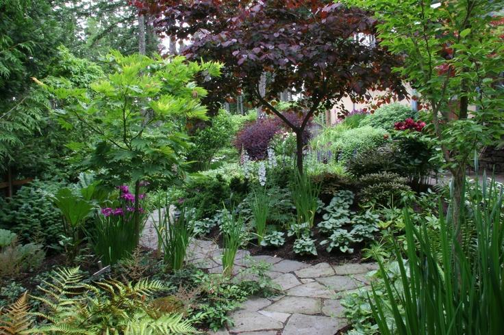 The garden burgundy revisited for Trees garden of jane delawney blogspot