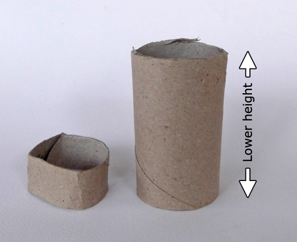 toilet paper roll, paper roll