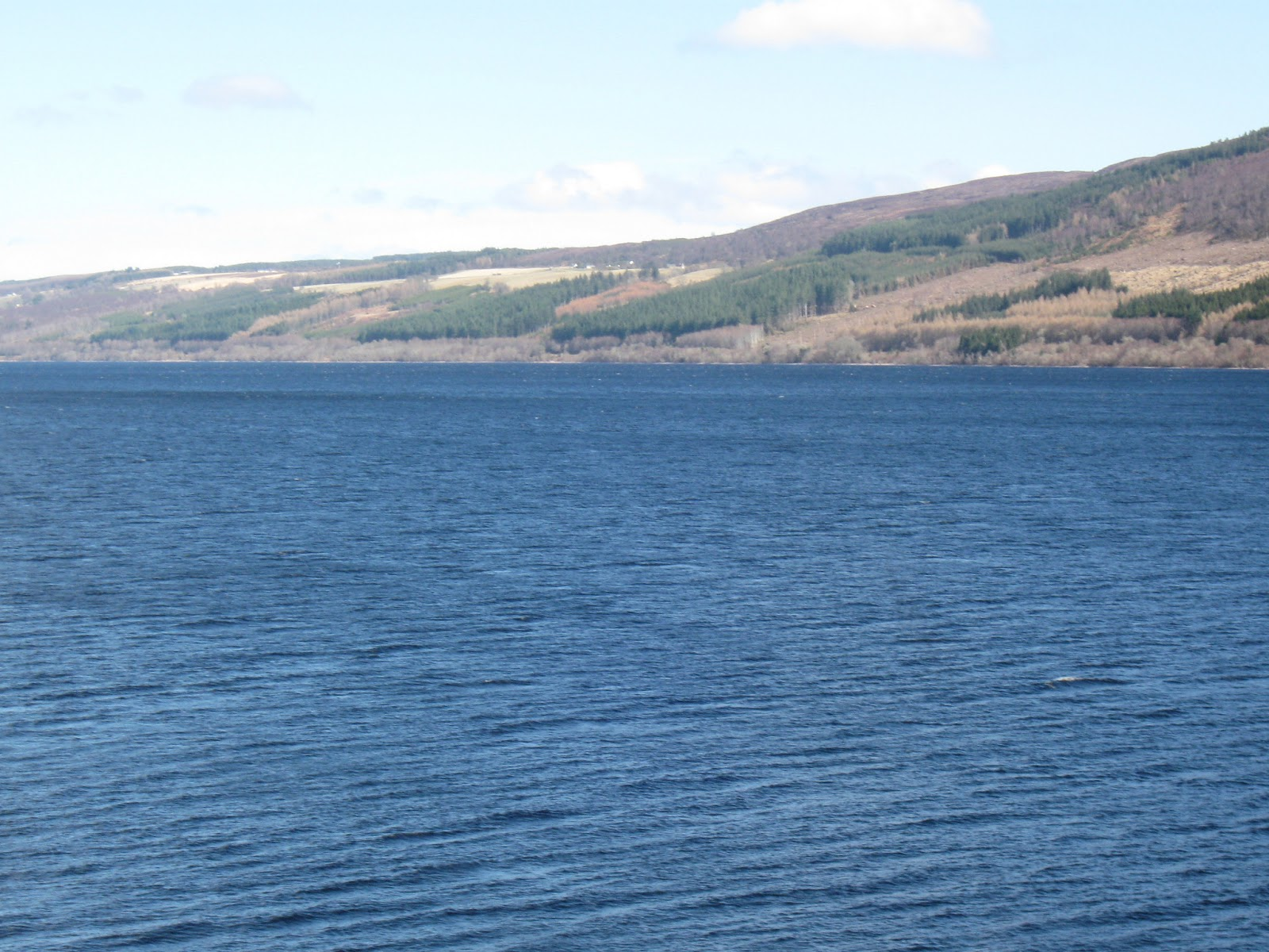 Loch Ness Monster Sightings 2014 Loch ness monster: