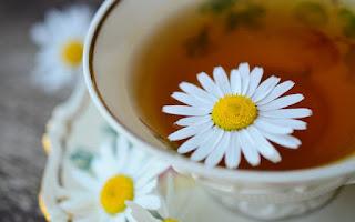 Plantas medicinales para adelgazar y controlar peso