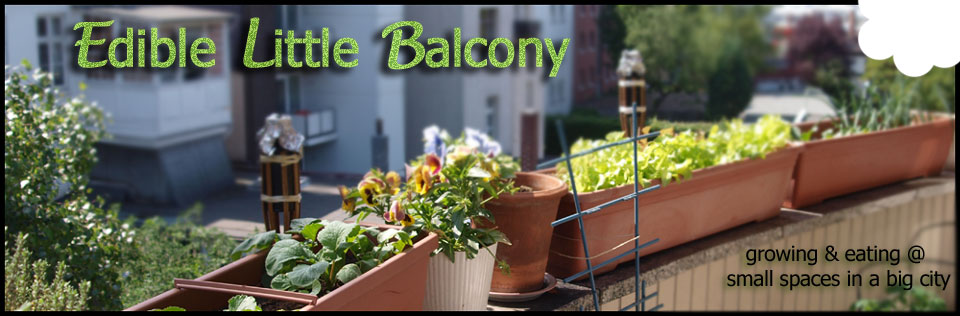 Edible Little Balcony