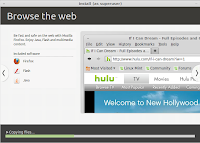 Browse the websites safely with Linux Mint