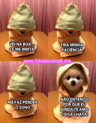 Fotos Facebook: Te Amo Seu Chato