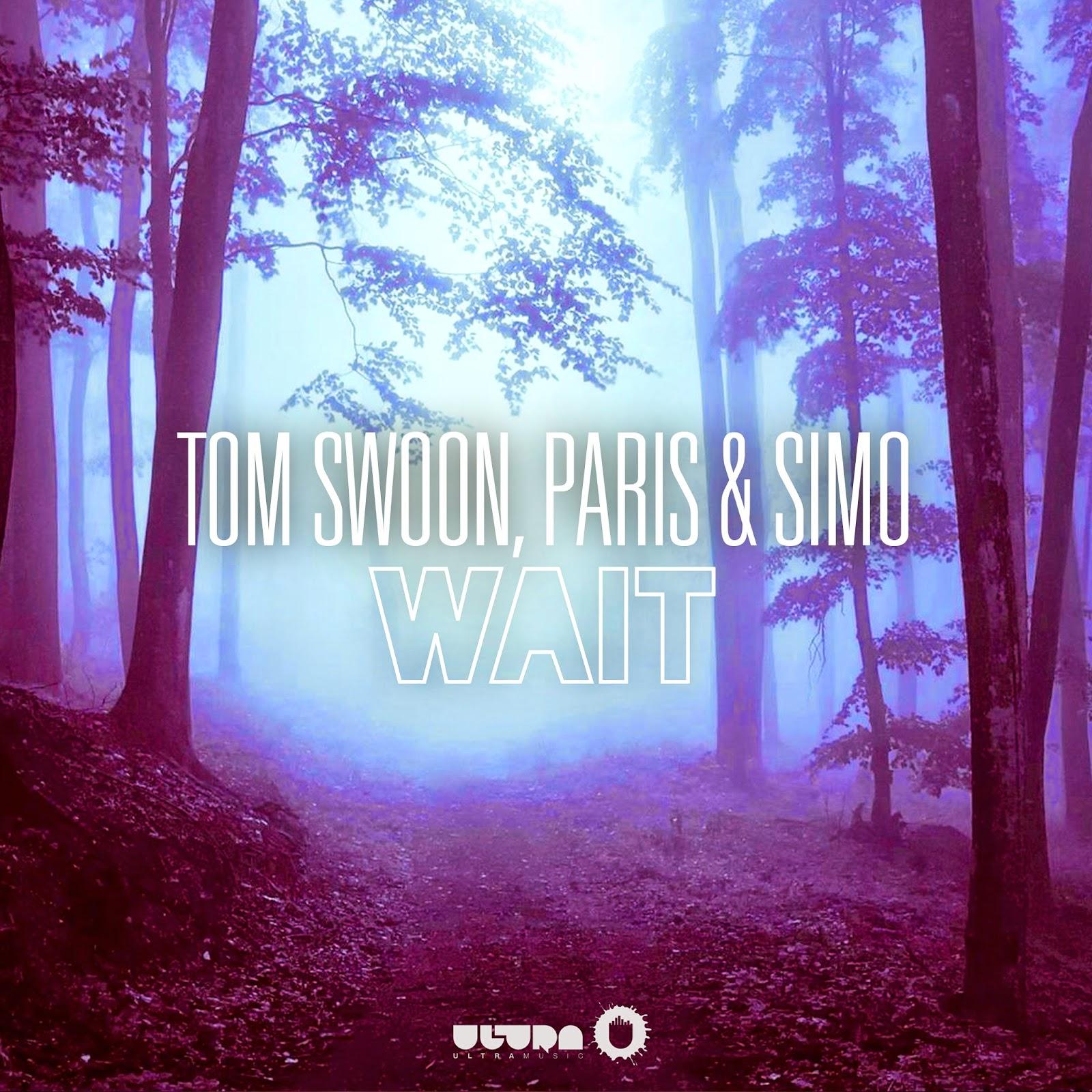 Tom Swoon, Paris & Simo - Wait (Original Mix) - YouTube