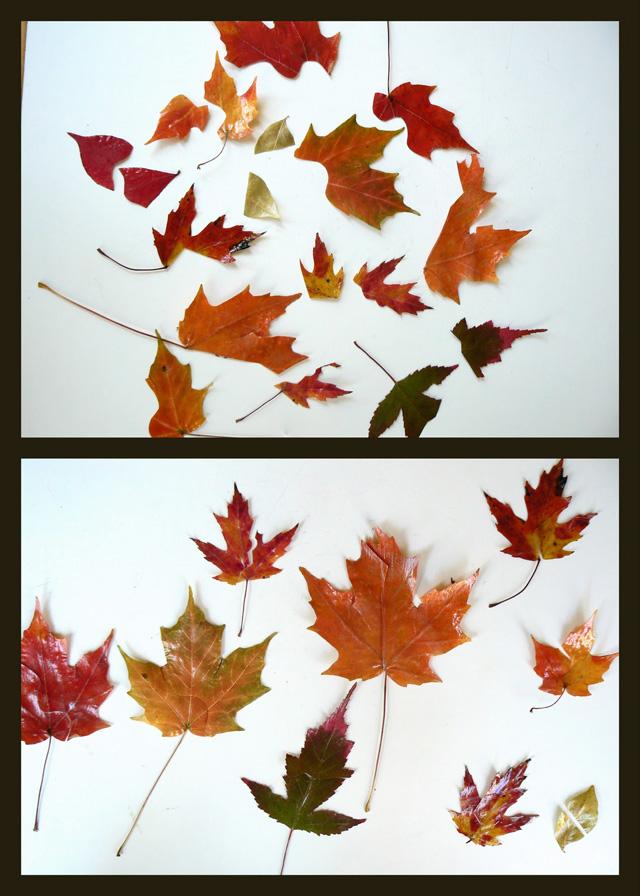fall+leaf+puzzles.jpg
