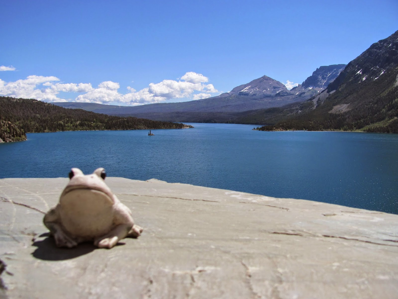 Frog poses on a rock near St. Mary Lake at Glacier National Park in Montana