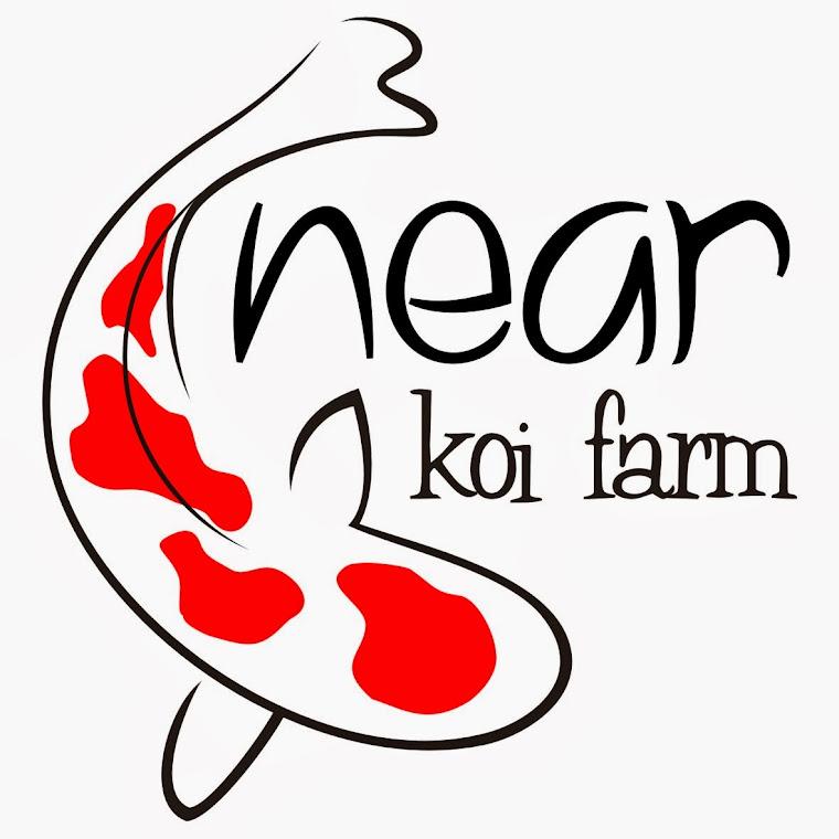 Near koi farm for Koi dealers near me