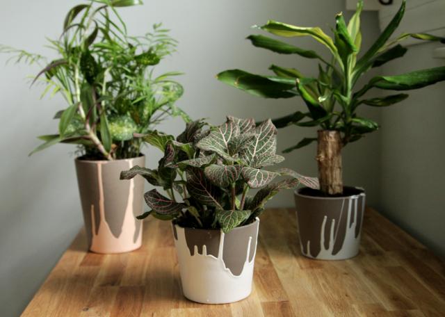 Decor Fix - paint dripped planters
