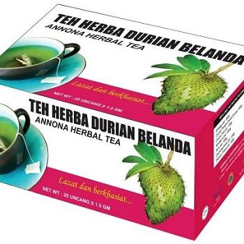 http://1.bp.blogspot.com/-e7p1cxD8qLo/UT21WK_x8QI/AAAAAAAAGnA/t79QelmFTDg/s1600/durian+belanda.jpg