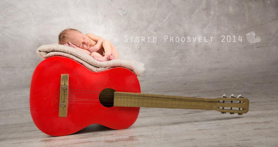 beebi-kitarril-vastsyndinu