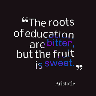 Aristotle on the importance of education