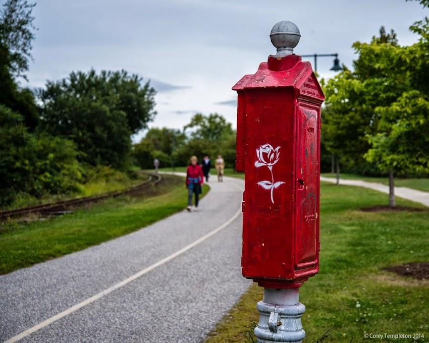 Portland, Maine 2014 photo by Corey Templeton rose stencil on Eastern Promenade