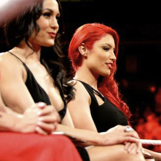 Brie Bella had a nip slip during the July 22 edition of WWE Raw, and