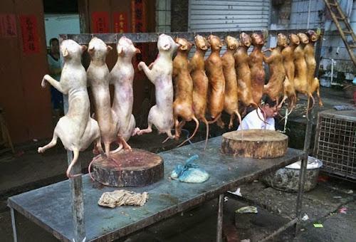 Cães assados são vendidos em cidade chinesa