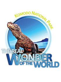 Komodo National Park Real Wonder on Indonesia