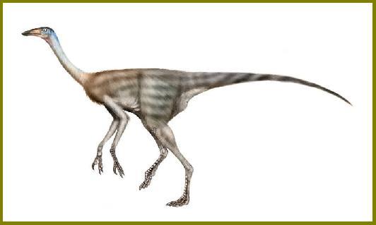 Struthiomimus : Dinosaurios del mundo