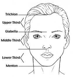 Nose Proportions