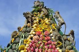 Monkey Buffet Festival, Thailand