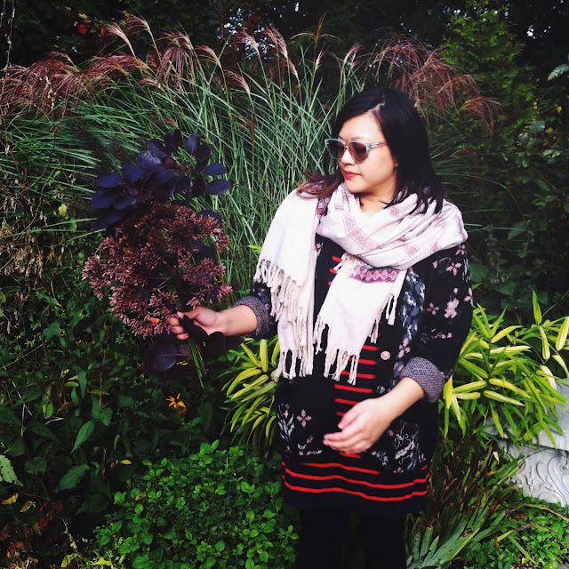 Kitty N. Wong / Fall and fauna