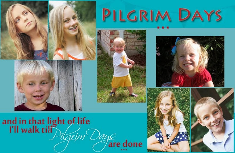 Pilgrim Days