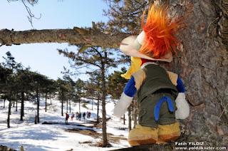 Ağaçkakan Woody (Woody Woodpecker)