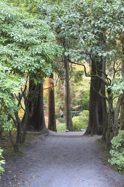 Japanese Tea Garden, Portland tea garden